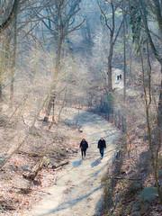 Strollers in the Ravine in Prospect Park (jrakis) Tags: prospectpark ravine hikers strollers