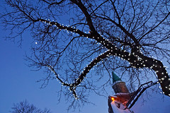 Rampart of Quebec City at blue hour (marko.erman) Tags: christmas light canada tree tower night quebec branches sony illuminations bluehour quebeccity fortification lacitadelle
