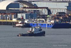 7729_Bearcat_Muzon (lg evans Maritime Images) Tags: waterfront westseattle harborisland tugboats portofseattle vigor seattlewa westar muzon lgevans maritimeimages lgevans brearcat