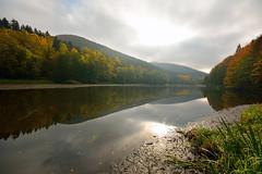 Quand le brouillard s'en va (Excalibur67) Tags: autumn forest automne landscape nikon sigma paysage reflexion reflets tangs d7100 vosgesdunord forts ex1020f456dchsm