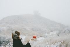 apple (another side view) Tags: winter portrait woman art apple nature japan female 50mm artwork nikon sigma aso artworks kumamoto artline naturepeople womanportrait nikondf 50mmart