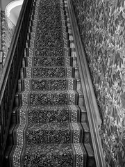 Step in time. (Nance Fleming) Tags: blackandwhite texture monochrome stairs carpet patterns steps indoor clash stairwell staircase