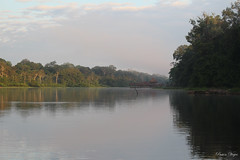 "Vistas desde la barca • <a style=""font-size:0.8em;"" href=""http://www.flickr.com/photos/78328875@N05/25672536913/"" target=""_blank"">View on Flickr</a>"