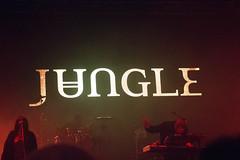 Jungle - Estéreo picnic 2016