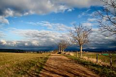 landscape (atsjebosma) Tags: trees sun france march bomen path pad hills frankrijk landschap 2010 darksky maart heuvels atsjebosma