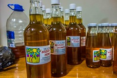 "Bequia Honey • <a style=""font-size:0.8em;"" href=""http://www.flickr.com/photos/91306238@N04/25869673761/"" target=""_blank"">View on Flickr</a>"