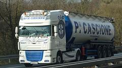 BG - P. le Cascione DAF XF 105 SSC (BonsaiTruck) Tags: truck silo lorry camion trucks bulk lastwagen daf lorries lkw ardor xf citerne lastzug silozug cascione powdertank