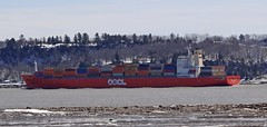 OOCL Belgium (Jacques Trempe 2,470K hits - Merci-Thanks) Tags: canada river ship belgium quebec container stlawrence stlaurent fleuve caprouge oocl navire conteneur