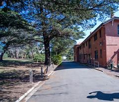 Jacksons Hill Sunbury Asylum-1158 (perplexing images) Tags: hospital hill spooky ghosts asylum jacksons psychiatric mental sunbury