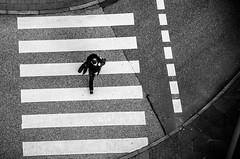 walk(ing on) the line(s) (JayPiDee) Tags: street bw streetphotography fromabove sw crosswalk zebrastreifen zebracrossing vonoben strase strasenfotografie
