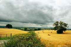 Clouds (laurenbywaterphotography) Tags: trees sky nature clouds countryside shropshire lane fields bales
