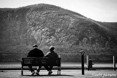 Sunday view (999theo999) Tags: pictures blackandwhite ny newyork love look bench spring amazing cool view respect sony famous sunday pic lookup newyorkstate myview sundayafternoon newyorklove ilovenewyork myphotography sonyalpha mycapture oeht oehtpictures
