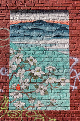 Blue Ridge Mountain Sunrise (Fire At Will [Photography]) Tags: color water beautiful miguel wall painting sushi fire photography japanese virginia town mural paint traditional richmond will va fisher carter cary rva momotaro fireatwillphotography