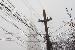 Crosses (Brînzei) Tags: trees winter sky birds animals fog pigeons churches crosses cables m42 murky manualfocus cableporn bucurești muncii lzos magatti jupiter985mmf2mc sonynex7