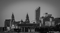 Liverpool Skyline (crezzy1976) Tags: blackandwhite monochrome skyline architecture liverpool buildings nikon photoaday 365 wirral merseyside cit liverbuilding easthamferry d3100 crezzy1976 photographybyneilcresswell 366challenge2016