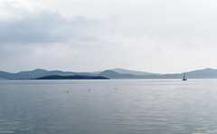 D pace e tranquillit (Fabrizio Iannaccone) Tags: lake lago island boat swan nikon barca picture uccelli vela trasimeno isola cigni anatre d5500