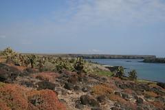 IMG_7639 (chupalo) Tags: lavarocks islasplaza