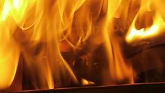 Not very good Converse clones get burnt (eurimcoplimsoll) Tags: trash shoes sneakers trainers canvas burn burnt converse clones destroyed trashed destroy plimsolls plimsoles