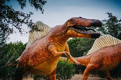 Spinosaurus (greghanover) Tags: nature texas dinosaur carnivorous glenrose spinosaurus spinylizard spinosauridae midcretaceous spynuhsawrus