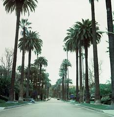 Beverly Hills (spcycuttlefish) Tags: travel mediumformat lomo turquoise 120film yashicamat lomochrome