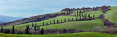 Winding Road in Tuscany (cheryl strahl) Tags: trees winter italy green clouds europe tuscany fields cypress dirtroad montepulciano rollinghills cypresstrees windingroad castelluccio chianciano viacassia lafoce