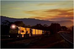 Trains In Tasmania - TR05 + TR13  wallowing in golden light with Train No 34. (Trains In Tasmania) Tags: sunset train smoke australia scene caterpillar smokey tasmania backlit glint tr backlighting teatree glinting diesellocomotive tasrail tr13 tr05 canoneos550d trclass trainsintasmania tasmanianscenary tasmaniancountryside latelighting stevebromley ef35350mm13556lusm