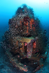 The Pyramid (Randi Ang) Tags: bali canon indonesia photography eos underwater angle wide dive scuba diving fisheye ang 15mm randi 6d amed