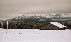 Combloux, lomography, 6 (Patrick.Raymond (2M views)) Tags: france alpes lomography nikon savoie mont blanc haute combloux