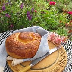 The Staff of Life....aka bread, broa, brod, pao, pan, pain, pane,brood, bara, brot, kruh.... (Anni - with camera -) Tags: bread pain sugar butter eggs loaf bara pane flour brot broa brood kruh brodpao