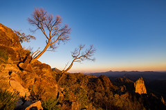 Warrumbungle Light (robertdownie) Tags: trees sky mountains rock forest sunrise volcano rocks australia nsw newsouthwales shield peaks dyke volcanic warrumbungles breadknife bushland warrumbunglenationalpark grandhightops peralkalinetrachyte