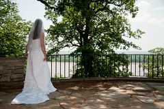 bride at overlook (stlcparks) Tags: amber arnold finished telegraph forestpark berman beetreepark beppler bermanbeppler