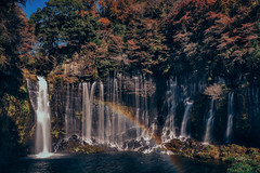 Shiraito Falls  () in Japan Shizuoka . DSC_4529 (Ming - chun ( very busy )) Tags: travel tree river waterfall leaf maple rainbow nikon colorful 28mm   nikkor  shizuoka   d800  28mmf18        traveljapan          nikon28mmf18  nikon28mm18