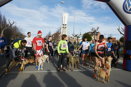 "Canina popular San Silvestre 2015 La Virgen del Camino • <a style=""font-size:0.8em;"" href=""http://www.flickr.com/photos/66442093@N08/24022963515/"" target=""_blank"">View on Flickr</a>"