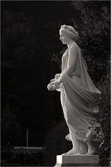 Schlosspark Weesenstein (p h o t o . w o r l d s) Tags: blackandwhite bw fuji sw monochrom schlosspark weesenstein s5pro photoworlds