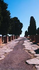 Ruins of Itlica (laurenspies) Tags: andaluca spain ruins roman santiponce itlica