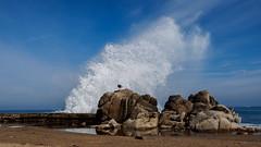 TripleOverHead-221 (bob felice) Tags: california us waves unitedstates pacificgrove 2016 tripleoverhead