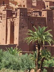 at Benhaddou, Morocco (gerben more) Tags: africa building monument towers morocco palmtree kasbah
