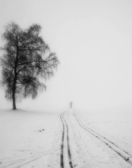 FollowMe (Jrg Vetter) Tags: street schnee winter bw white snow man black tree art nature fog clouds forest nikon power action outdoor branches dream young himmel wolke mind d750 hanging spruce beech jrg jove the vetter 28200 einfarbig