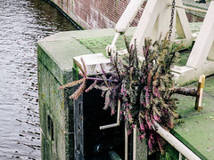 Kerstboom (MJ Klaver) Tags: amsterdam christmastree discarded singel kerstboom foundstilllife cart s120 afgedankt canonpowershots120