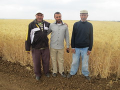 IMG_2244 (ICARDA-Science for Better Livelihoods in Dry Areas) Tags: farmers northafrica morocco climatechange mena pulses ifad nutrition resilience drylands icarda incomes westasia croprotation seedsystems conservationagriculture euifad wheatlegumecroppingsystems