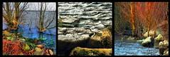Winter squares (tina negus) Tags: water squares rutland edith weston