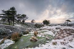 A Mining Landscape (.Brian Kerr Photography.) Tags: morning winter snow cold landscape photography sony mining cumbria nenthead outdoorphotography sonypro sonyuk a7rii