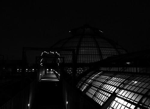Galleria - Roof