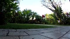 CallingJohnToBreakfast (tellytomtelly) Tags: hawaii timelapse maui