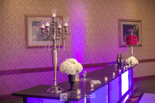 "Custom Bar Cedar Rapids Marriott Wedding Rental • <a style=""font-size:0.8em;"" href=""http://www.flickr.com/photos/81396050@N06/24955278096/"" target=""_blank"">View on Flickr</a>"