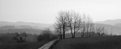 Odenwald (vd1966) Tags: bestcapturesaoi elitegalleryaoi