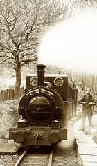 TR 44095libwconttonecr (kgvuk) Tags: station trains railwaystation locomotive railways tr steamlocomotive northwales talyllyn narrowgaugerailway dolgoch talyllynrailway 042st dolgochfallsrailwaystation