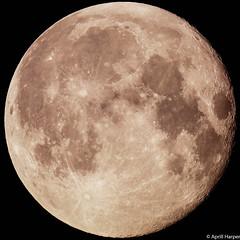 24feb16 lunar c (Wyld-Katt) Tags: moon lunar