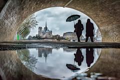 Rainy day in Paris (Risto_Les) Tags: paris reflection rain umbrella notredame tamron2470 sonya7r