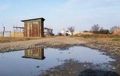 Hut and puddle (odeleapple) Tags: film field puddle minolta mc hut 55mm xd reflextion rokkorpf fujicolor100